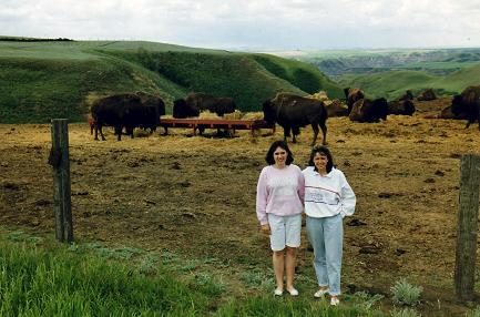 Lidia and Tara in front of a buffalo farm 7km from Drumheller