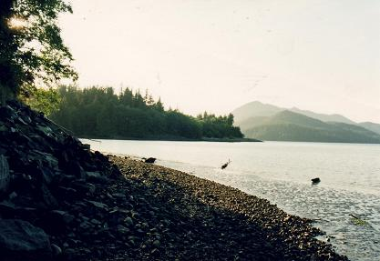 Lake near Ucluelet