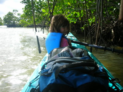 Being stuck under the mangroves pushed by the wind