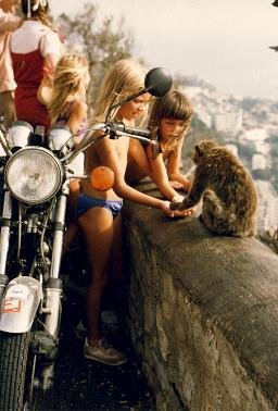 Girls playing with monkeys