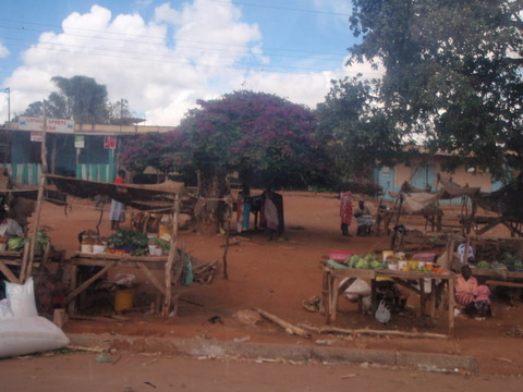 Typical Kenyan village street