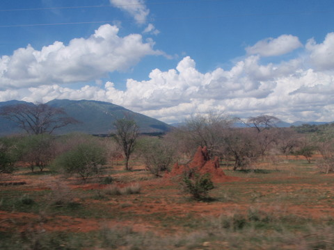 Termite mound in Kenya with mountains in the back