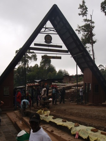 Machame Gate (start of trek) (5718 ft/1738 m): wikipedia
