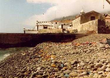 Old fish market un Funchal