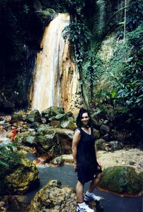 Devant les chutes spectaculares Diamond Falls