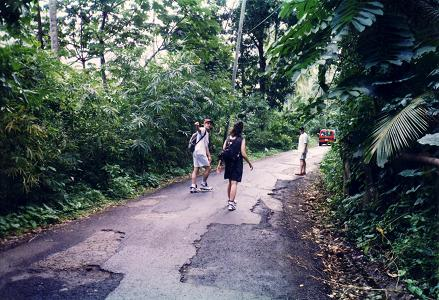 Walking back to Soufriere after visiting Diamond Botanical Gardens