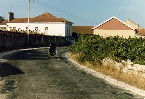 Old lady in a wheelchair entering the village