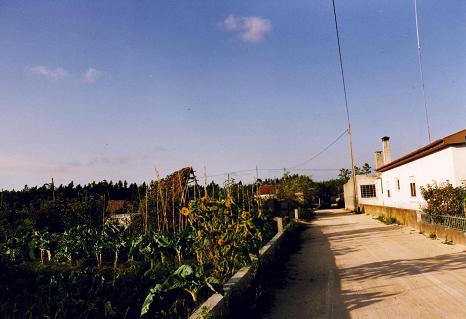 Small street in Serredade